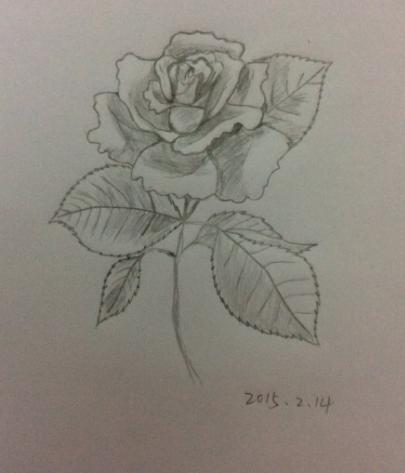 玫瑰花瓣画法素描图片
