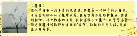 """【结果公布】【沪江大语文周年庆】""""采集美""""微作文大赛:用快门记录灵感,用笔尖书写美好!"""