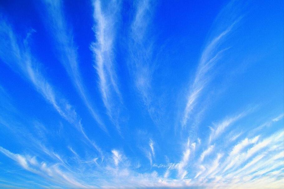每天一个单词--blue_零基础英语从头学_语言-沪