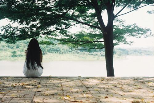 4981,浅夏,凉风习习...(原创) - 春风化雨 - 诗人-春风化雨的博客