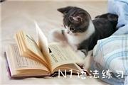 【N1语法练习】语法001「~(の)いかん」