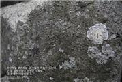 萌图韩语故事(1):《天空不只是灰色的哦》