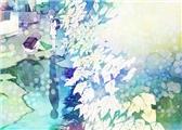 【N1语法800题】471-475