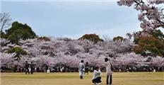ゆか带你看日本:第四十三期-日本人五一怎么玩