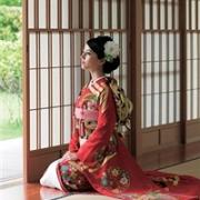 你有没有纳闷过日本人长时间跪坐不累吗?