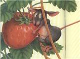 【资源分享】动物和食物的歌曲和绘本(资源帮助,分享快乐)