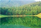 28#Shall We Talk#环境问题——Environment Problem