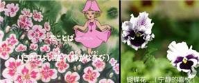 【法语影视会分享】(回顾经典 追忆童年)花仙子第一集:奇怪的访客 (中法双字)下载