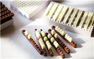 【吃货们的福利】N款全球最具创意的巧克力,你舍得吃么?