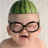 西瓜头的瓜棚