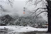 【冬至】今天,你吃饺子了么?