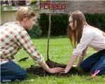 说好的电影分享:《【怦然心动】 Flipped》——美好纯真的初恋