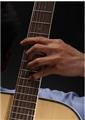 确定好的左手姿势+强化左手小指真正有效的办法!!!
