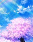 樱花浪漫小屋-----樱花的洗礼