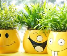 【每天学点心理学第六十六期】心情快乐可强化免疫功能