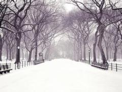 """2015的第一场雪,你赶上了么?聊聊跟""""雪""""有关的习语"""