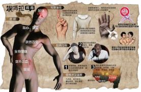 第五十六期:ebola