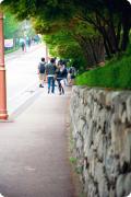 【韩国校园美景】这儿是宋仲基&文根英的母校 — 成均馆大学(春天篇)!