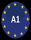 意大利语A1语法大盘点