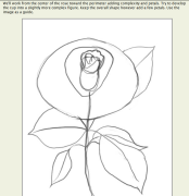 #画一画#【教程】第十期 怒放的玫瑰?玫瑰的怒放!