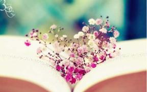 托福写作用词要符合语言习惯