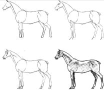 【资源放送】50种马的画法(系列教材周更)