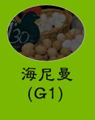 海尼曼G1