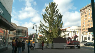 "Ugly tree helps Pennsylvania city find ""true meaning"" of Christmas"