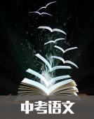 中学语文资料夹