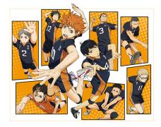 【原版漫画】《小排球》排球少年!!ハイキュー!! 第01-11巻