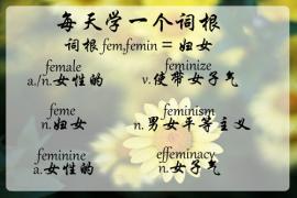 【每天学一个词根】fem = 女性