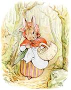 【回味童年 英语原版童书(三)】彼得兔的故事