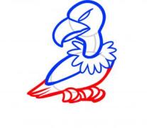 【跟我来学简笔画】今天教大家学习如何画秃鹰哦~~