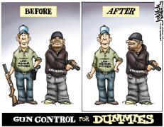 ASKING THE RIGHT QUESTIONS (4) 主张禁枪的都是大忽悠