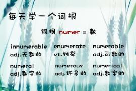 【每天学一个词根】numer = number,to count(数)