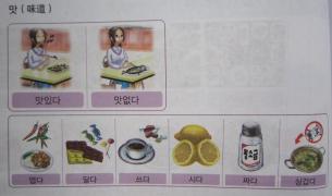 新延世【제4과 음식 饮食--2】课文