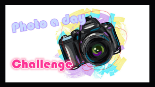 【photo a day challenge】07.06 — 画