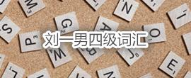 刘一男四级词汇