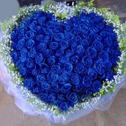 夺命蓝玫瑰