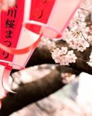 万事屋日语:走进日本