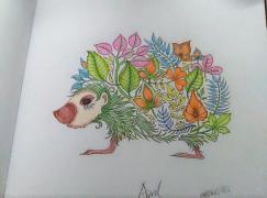 我的魔法森林之减压涂鸦