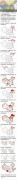 中国地图像大公鸡,然而鸡嘴究竟在哪里?(笑尿了。。。