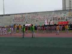 特色三门球炫酷亮相扬州十二届运动会开幕式