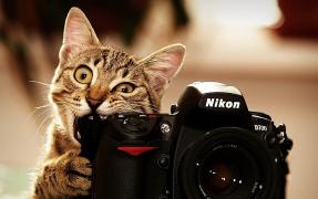 【从零开始学习摄影】★01★ 初遇摄影