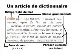 【慢速法语句子模仿秀】12.8 法语字典哪家强?