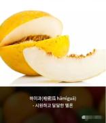 不要觉得你不幸福,这些水果在韩国是没有的