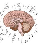 脑洞大开学西语