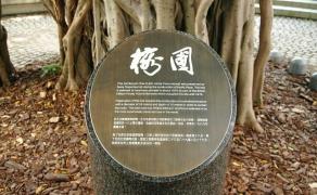 试读作品47号--《香港:最贵的一棵树》