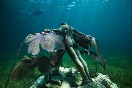 充满生命的海底艺术博物馆