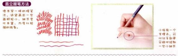 (已奖励)【水溶性彩铅手绘入门】NO.2